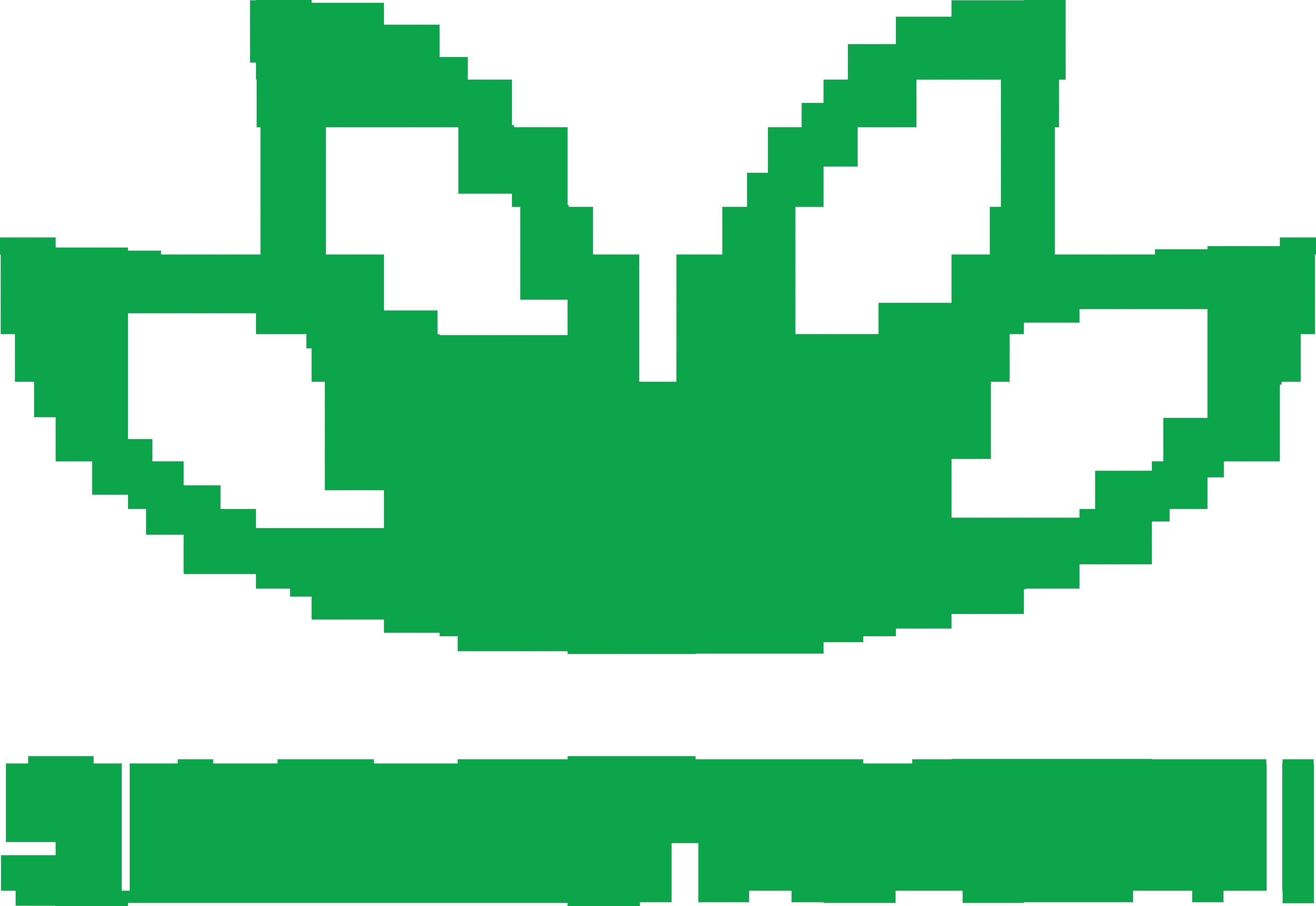 Logo Saraswanti